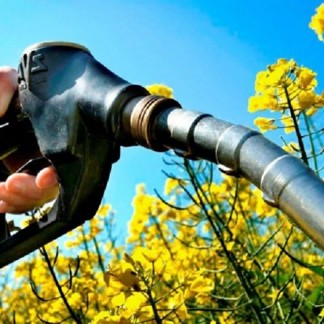Biocombustibles - A no olvidar